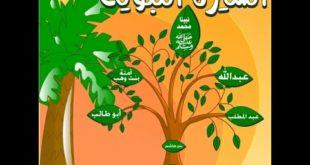 تحضير فواز درس أحب رسول الله صلى الله عليه وسلم